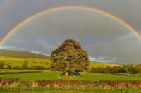 A rainbow over a hill.